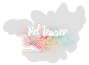 mercat_teaser.png