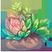 196-JeVeDEGorO-bundle-of-succulents.png